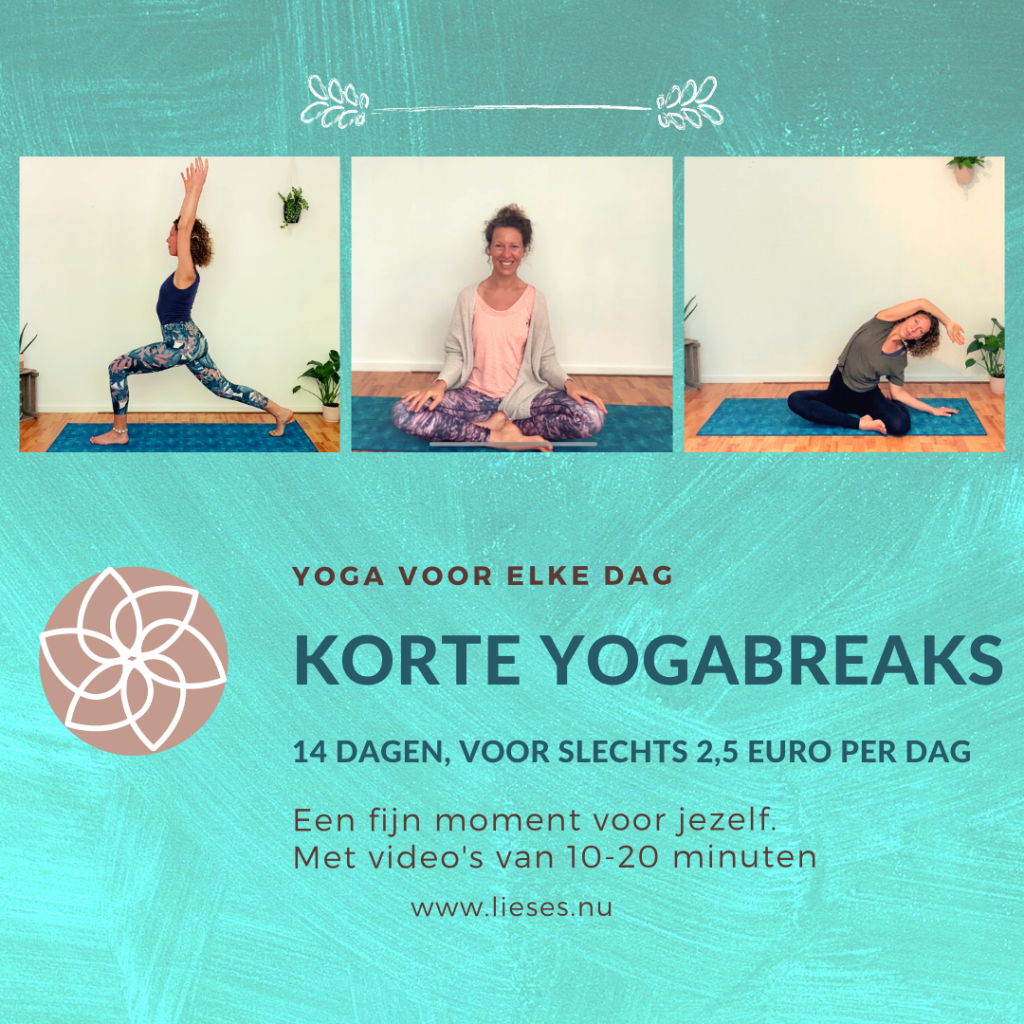 14 dagen korte yogabreaks